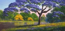 Jacaranda Tree.jpeg