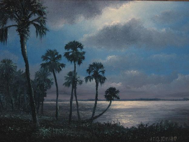 Florida Full Moon.JPG