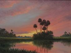 Florida Swamp.JPG