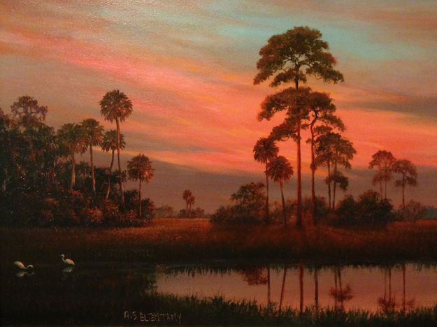 Florida Sunset.JPG