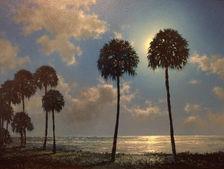 Florida Moonlite Palms.JPG