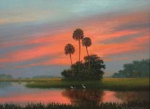 Florida FireSky.JPG