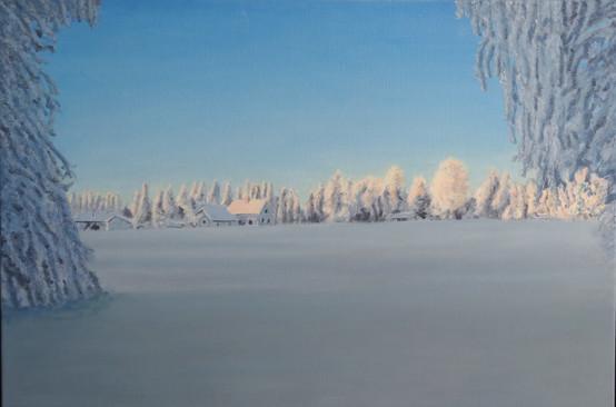 Björkliden Zweden in de winter