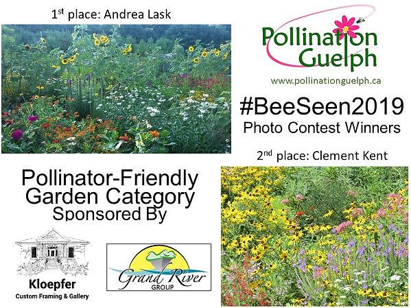 BeeSeen2019 Photo Contest Winners.jpg