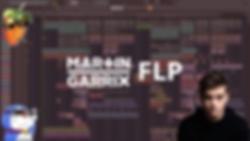 garrix flp 1.png