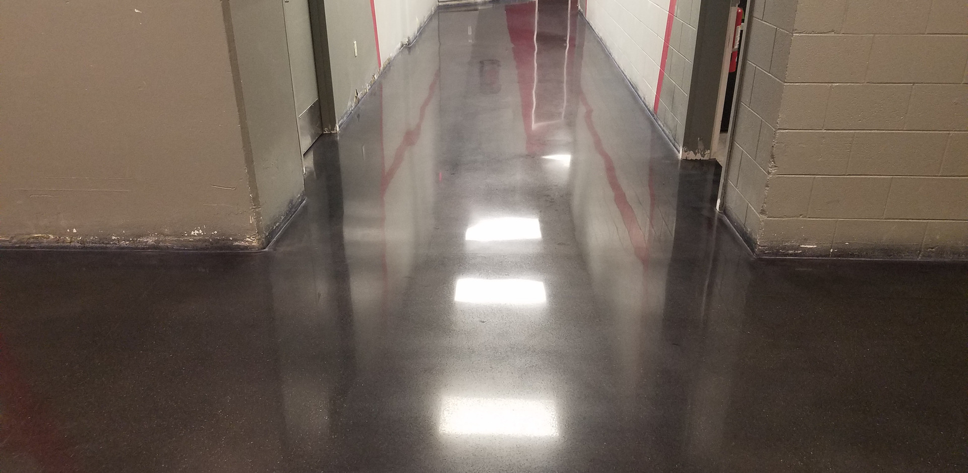 University of South Carolina, Stained [COLOR] & Polished Concrete