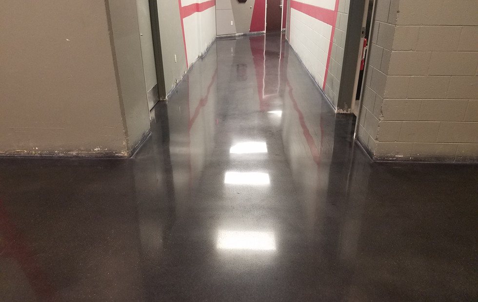 University of South Carolina, Polished and Stained Concrete Floor