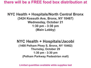 Free Food Distribution in the Bronx