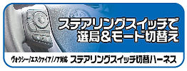 steeringSW-bn2.jpg