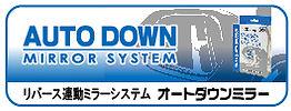 autodown-bn.jpg