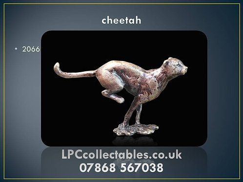 2066 cheetah