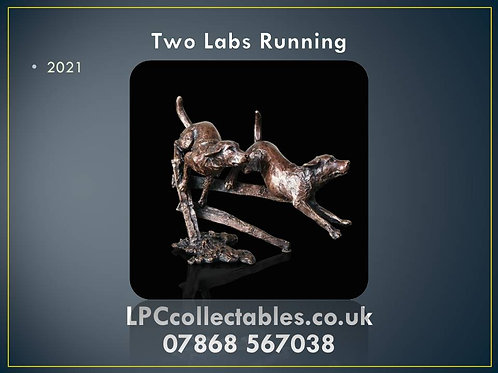 2021 two labs running
