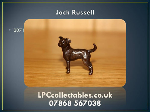 2071 Jack Russell