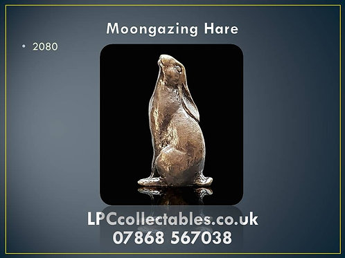 2080 Moon Gazing Hare