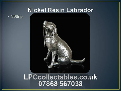 306np Nickel Resin Labrador