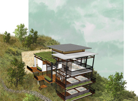 Retreat to the misty forest in wayanad