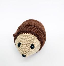 Monty the Hedgehog