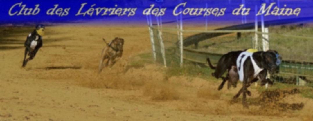 CLUB DES LEVRIERS DE COURSE DU MAINE