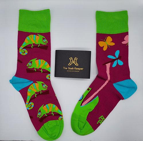 Dedoles Chameleon Socks