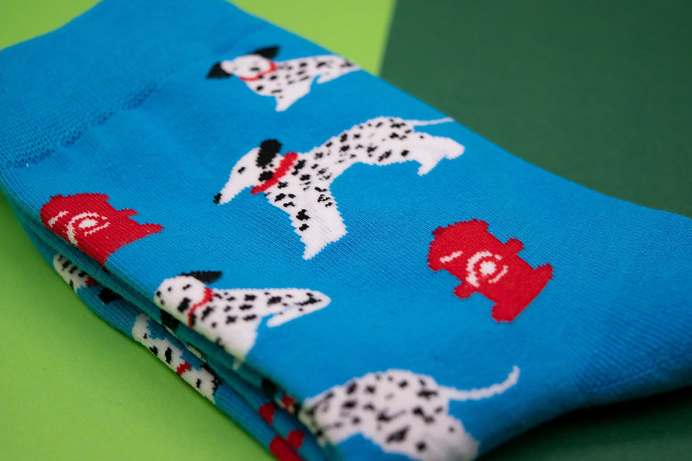 Dog socks Dalmations