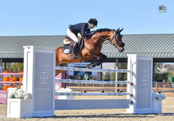 Two Bit Equestrian Jump - SHP - 2020