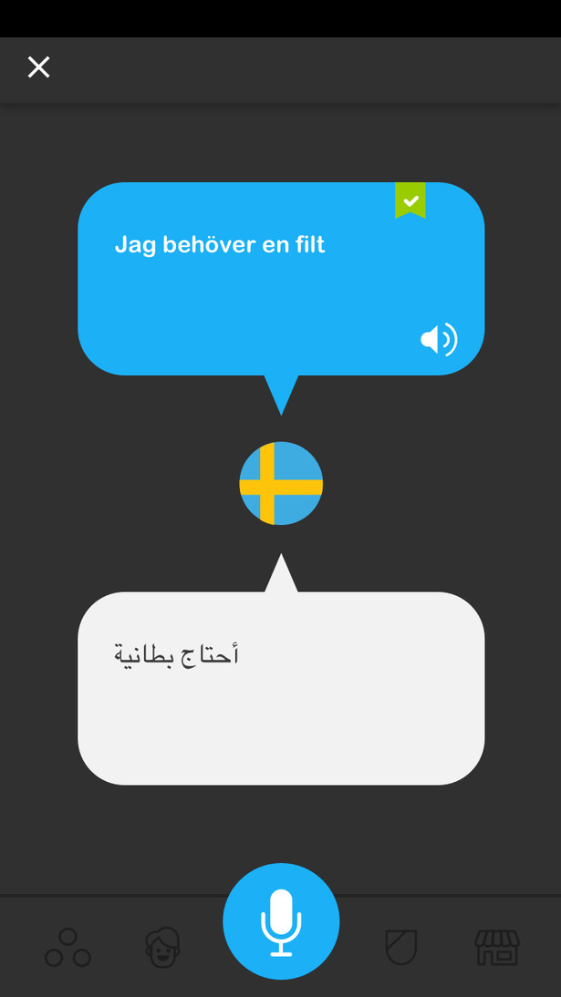 record-translate-language.jpg