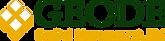 Geode_Capital_Management_Logo_edited.png