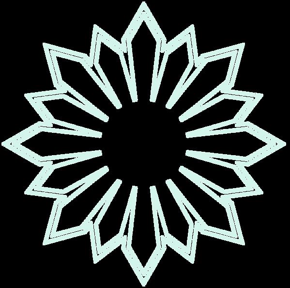 logo bleu petase.png