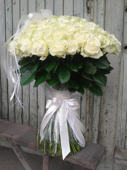 101 roze