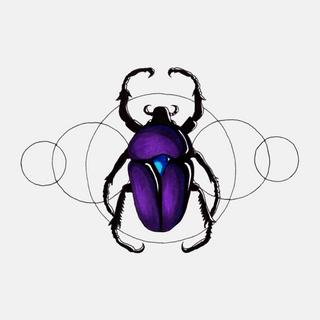 Jelly Beetle