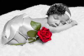 Newborn Photography 15.jpg