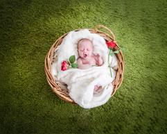 Newborn Photography  8.jpg