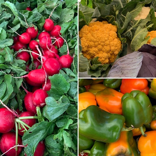 EM Small Full Season Pre-packed CSA (20 Weeks)