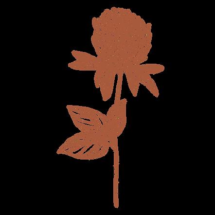 Boho Floral 3_edited.png