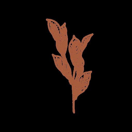 Boho Leaves 2_edited.png