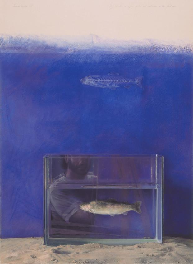 1997 Pastel on Paper 86 cm. x 61 cm.