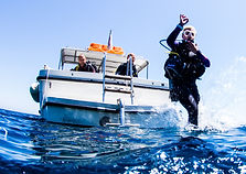 Boat Dive Visit Malta.jpg