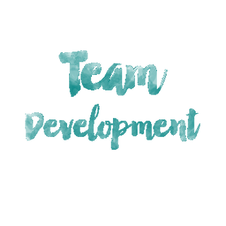 Team Development Teamentwicklung Hanne Rohrauer