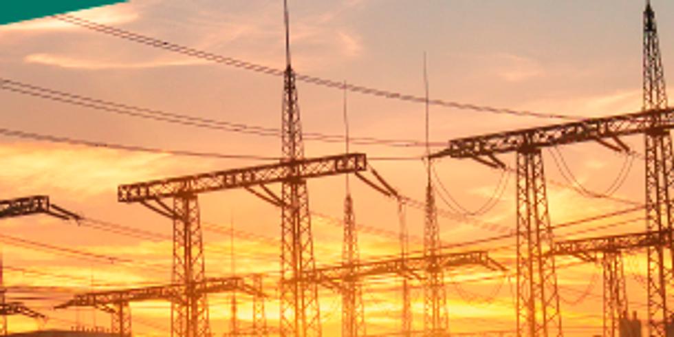 Workshop sobre o mercado de Energia Elétrica