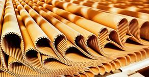 Expedição de papelão ondulado totalizou 292.290 toneladas em junho