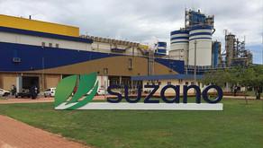 Suzano anuncia novo aumento no preço da celulose de fibra curta