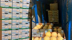 Embalagens da Klabin protegem embarque marítimo de frutas frescas para a China