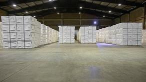 CENIBRA estabelece recorde de produção de celulose