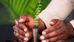 Novo marco de licenciamento ambiental vai atrair investimentos
