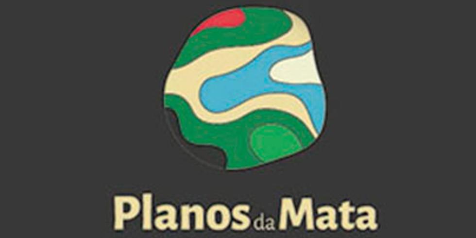 """Ibá convida para o lançamento do projeto """"Planos da Mata"""" junto com Suzano e SOS Mata Atlântica"""