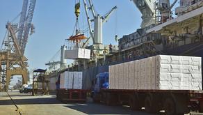 Crescem os embarques de celulose para a China
