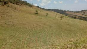 Técnicas de conservação do solo adotadas pela CENIBRA auxiliam no combate a escassez hídrica