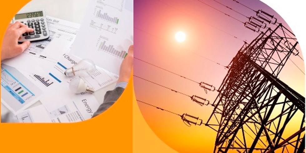 Capacitação: Estrutura tarifária na energia elétrica e os custos pagos pelos consumidores