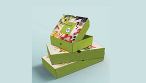 Konica Minolta lança impressora digital p/ embalagens papelão ondulado para designs personalizáveis