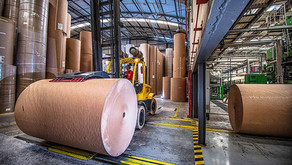 Klabin é autorizada a comprar negócios da International Paper
